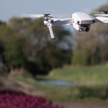 Met de drones een weekend boven de bloembollen